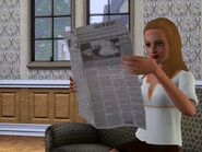 BleehSimSelf Newspaper