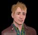 Gijs sr. Groentje (De Sims 3)