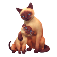 TS4Cats and Dogs Render 2