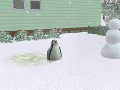 235px-Pingvin