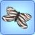 Papillon zébré