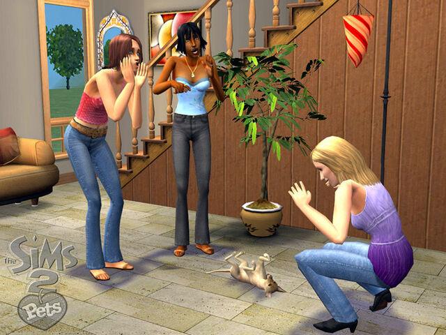 File:Sims 2 pets unused shirt.jpg