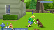 The Sims 2 Pets PSP Screenshot 05