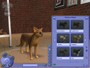 The Sims 2 Pets Screenshot 09