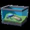 Песчаная баклажанная лягушка с волнообразными полосками