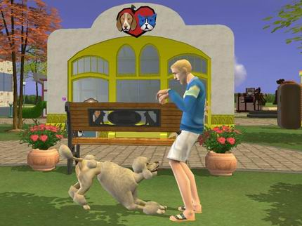 File:Town Square - playing with dog.jpg