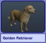 Golden Retriever (Sims 2)