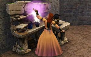 Sorcier (Les Sims Medieval)