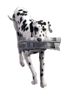 File:Dog newspaper TS3.png