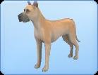Breed-l39