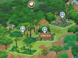 Belomisia Jungle
