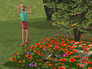 The Sims 2 Pets Screenshot 13