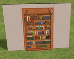 Ts2 very mysterious shelving