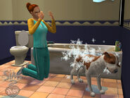 The Sims 2 Pets Screenshot 03