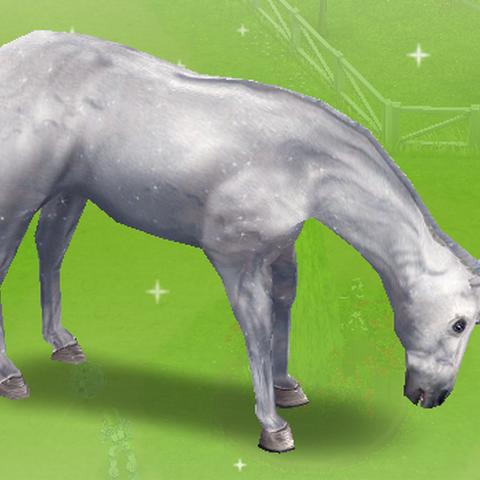 Unicornio común