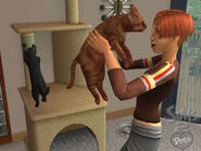 The Sims 2 Pets Screenshot 04