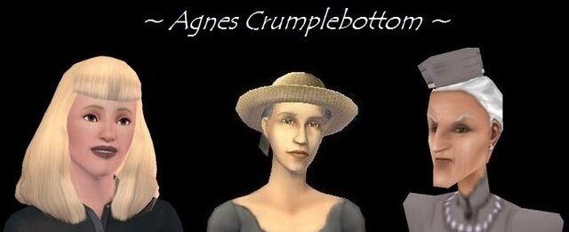 File:AgnesCrukpAppearances.jpg
