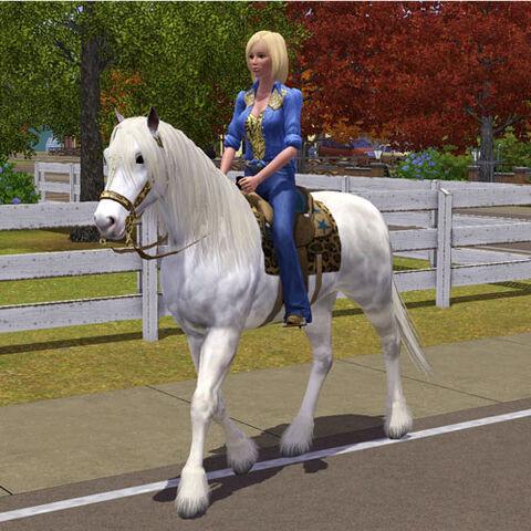 File:Horse-riding.jpg