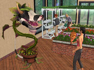 SIMS2UpcSCRNcowplantfinal
