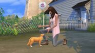 The Sims 4 Cats & Dogs Screenshot 13