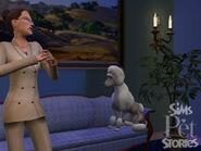 Histoires d'animaux 02