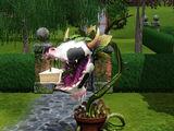 Muerte por planta-vaca