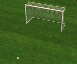 The Goal of Paul