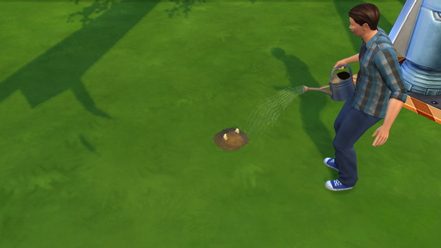 File:TS4 Cowplant Sprout Stage.png