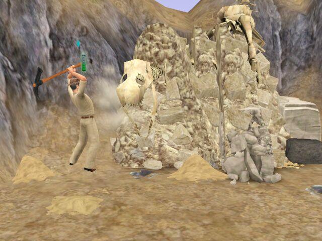 File:Fossil (3).jpg