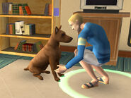 The Sims 2 Pets Console Screenshot 01