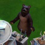 Les Sims 4 Saisons 13