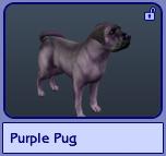Purple Pug (Sims 2)