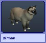 Birman (Sims 2)