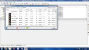 Sim Browser - SimPE