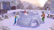 TS3 seasons winter igloo