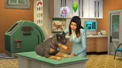 TS4 Cats and Dogs 3