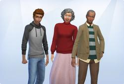 The Elderberry Family