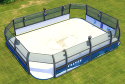 Large Deluxe Ice Rink