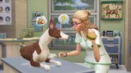 The Sims 4 Cats & Dogs Screenshot 14