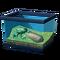 Древесная лягушка с волнообразными полосками