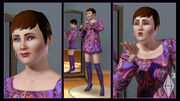 The sims 3 12-1-