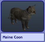 Maine Coon (Sims 2)