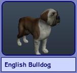 English Bulldog (Sims 2)