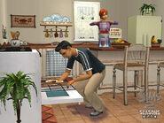 The Sims 2 Seasons Screenshot 03
