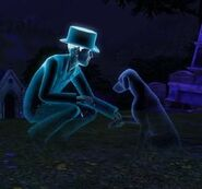 The Sims 3 призрак питомца