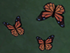 Бабочка-данаида