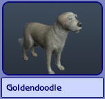 Goldendoodle (Sims 2)