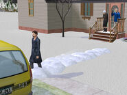 Нарцисс Маккавити покидает родной дом
