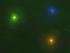 Радужный светлячок