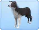 File:Breed-l16.png